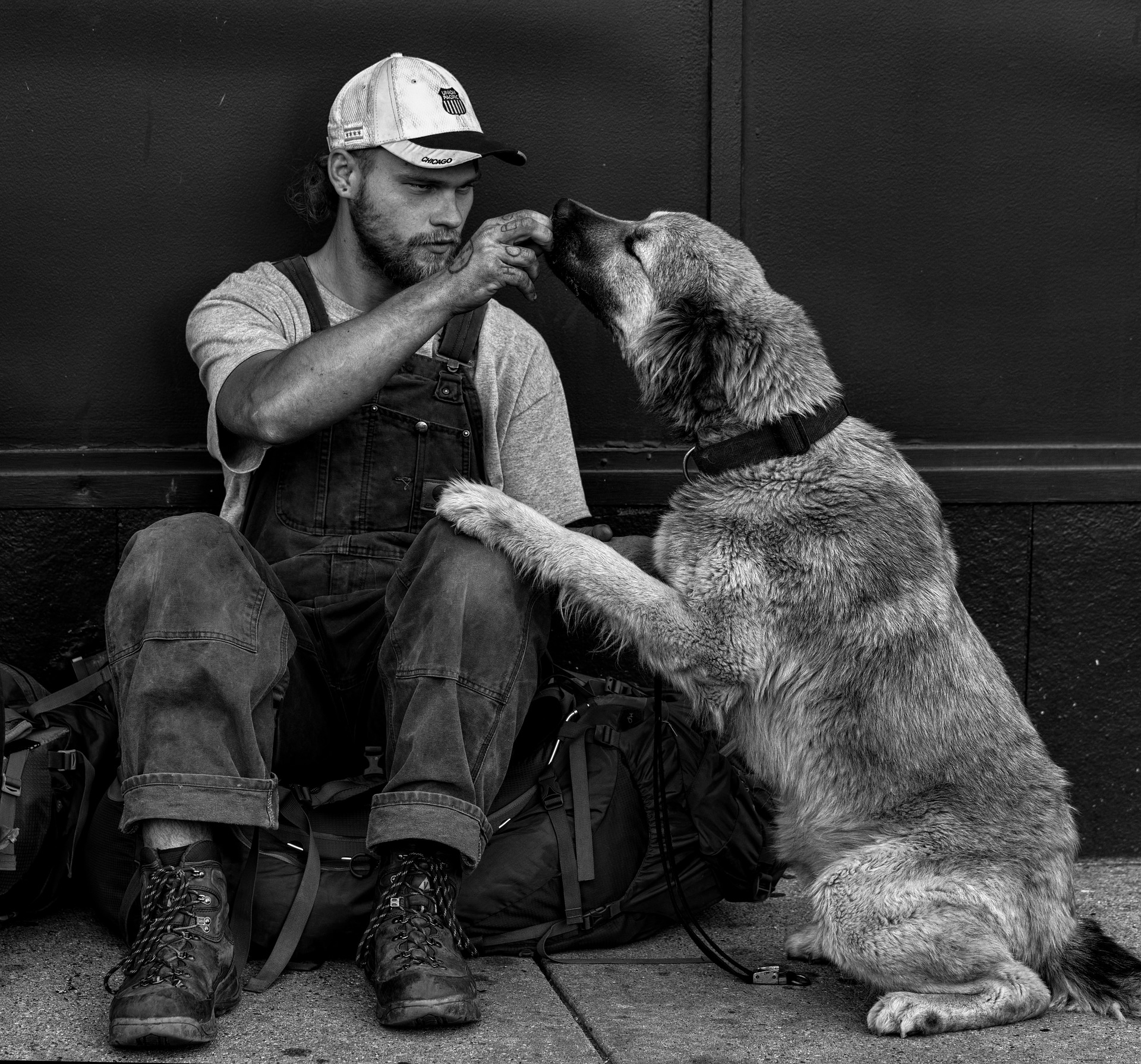 homeless-man-and-dog
