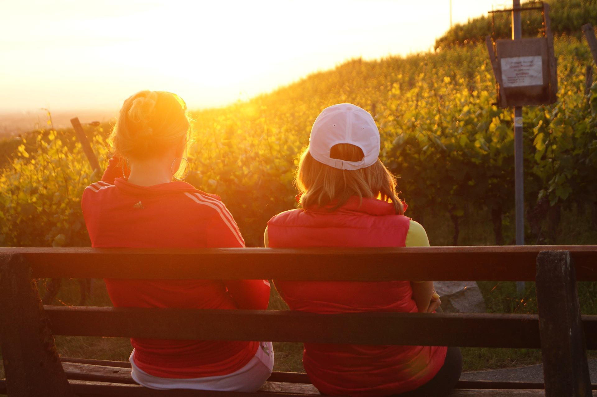friends on a bench sundown