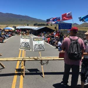 Protest Mauna Kea signs resizeIMG_5331